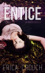 Blog Tour: Entice by Erica Crouch