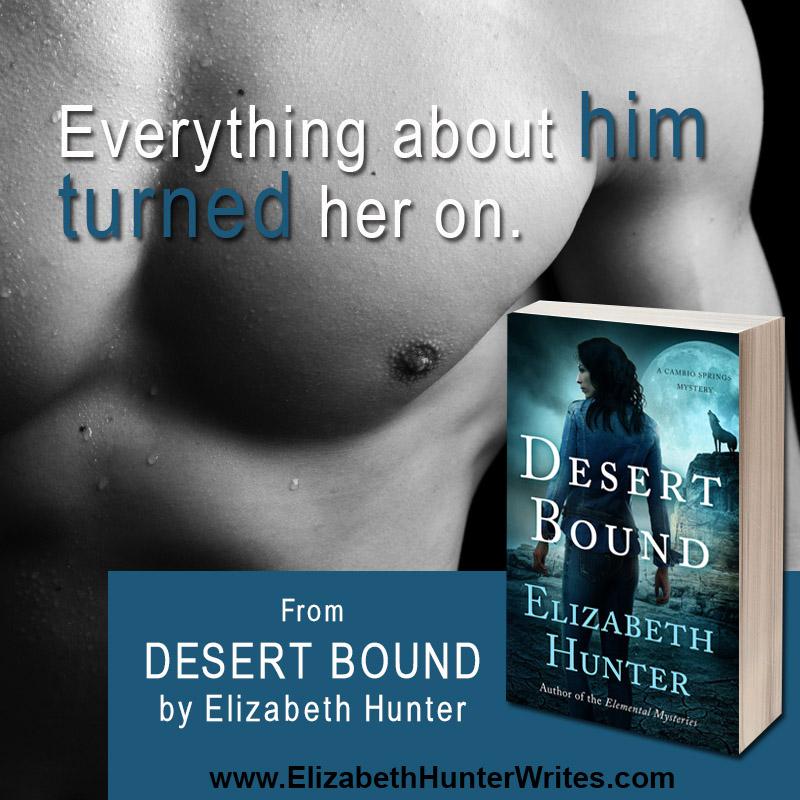 DesertBoundTeaser2